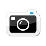 Flexible Camera Choices